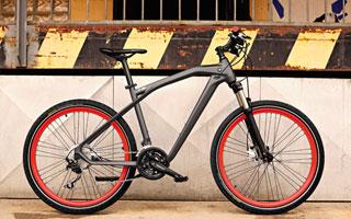 """Das BMW Cruise Bike besticht durch ein sportliches Design, welches mit dem """"Bullneck"""" an ein Motorrad erinnert."""