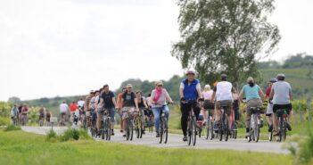 Der MainRadweg: Von Mainz nach Hanau