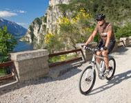 Die E-Bike Tour durch das Ahrtal startet in Altenahr und ist für den sportlichen E-Biker ideal, da die Strecke durch die Weinberge und das wunderbare Ahrtal verläuft.
