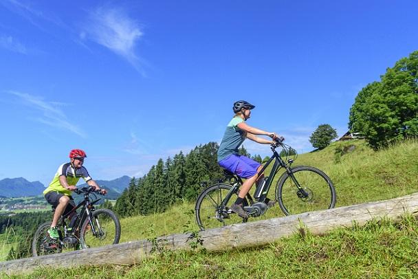 Entspannt den Berg hochradeln: mit E-Bikes kein Problem.(#02)