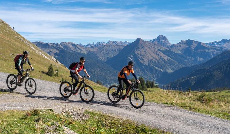 E-Bikes sind deutlich teurer als andere Fahrräder ( Foto: Shutterstock- Umomos )