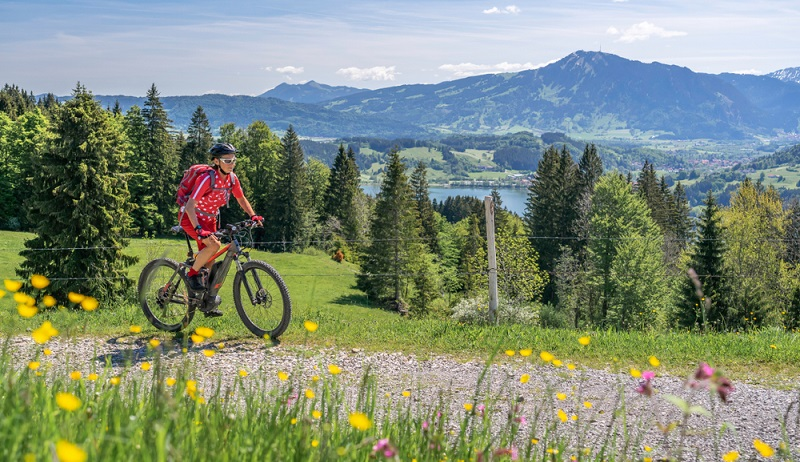 Für ein E-Mountainbike kann man viel Geld investieren ( Foto: Shutterstock-Umomos )