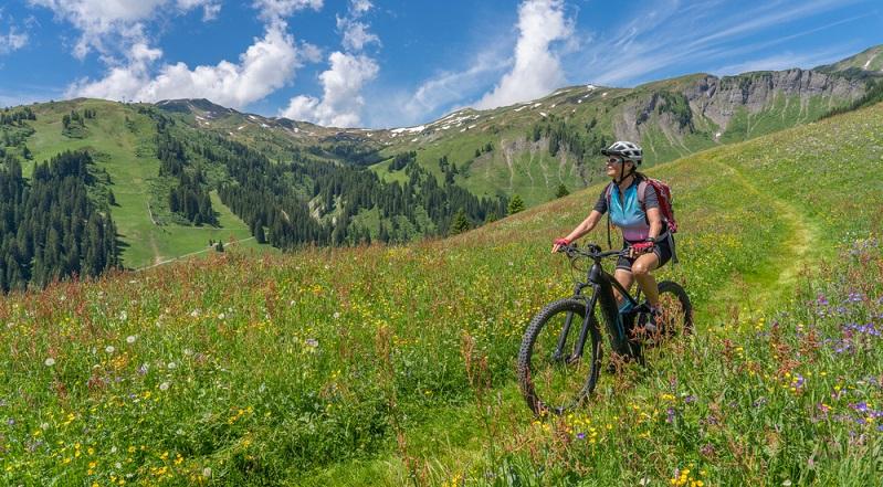 Vor dem Kauf sollte gut überlegt werden für welche Fahrradtyp man sich entscheidet ( Foto: Shutterstock-_Umomos )