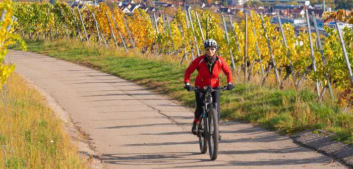 E-Bike statt Auto: So klappt der Alltag mit Elektrofahrrad ( Foto: Shutterstock-_ Umomos )
